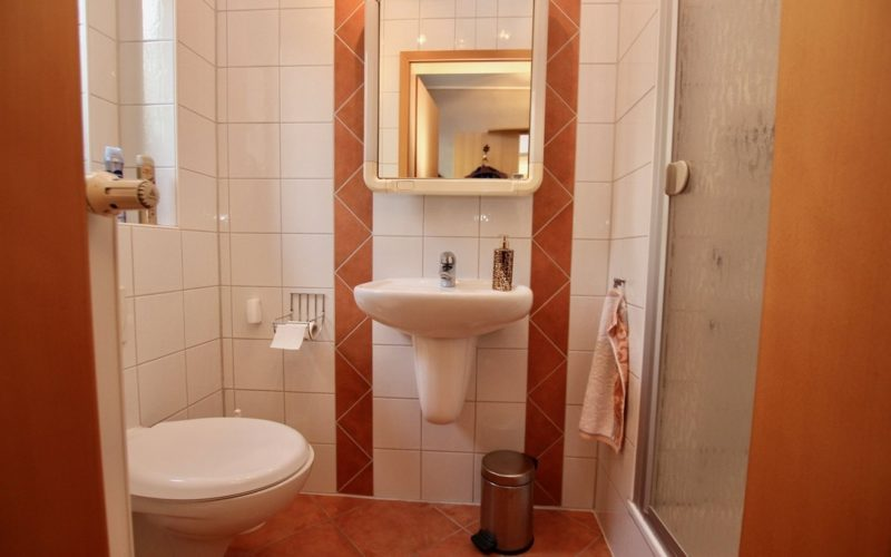 Badezimmer / Gäste-WC
